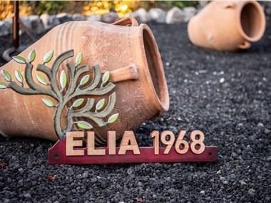 Elia 1968 Cave Houses, hotels in Finikia