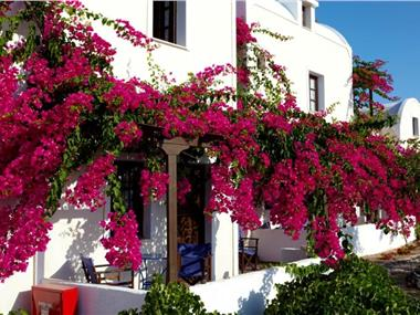 Anna Traditional Apartments, hotels in Kamari