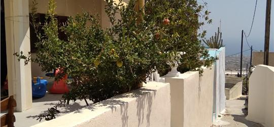 Photo of The Garden View 2