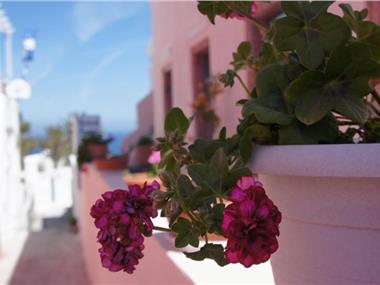 Marcos Rooms, hotels in Oia