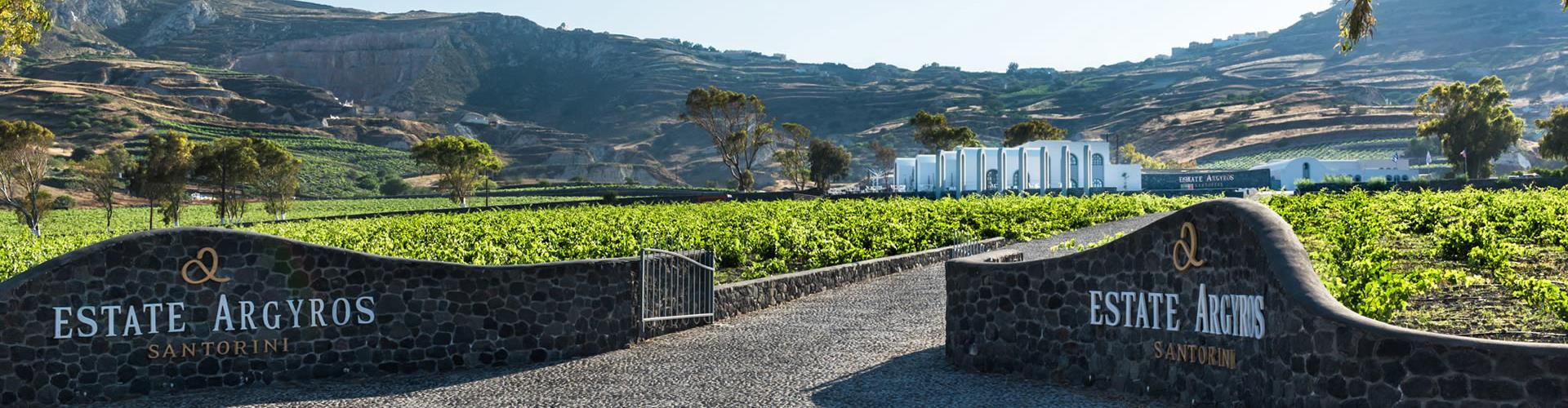 Photo of Santorini Through History & Wine Private Bus Tour